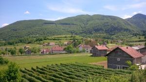 Bosnian nature